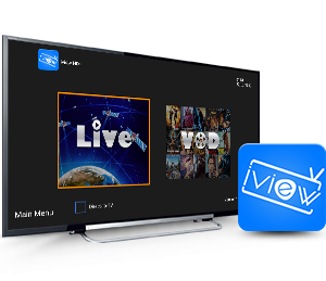 iView HD Basic 1 Month Hosting Service