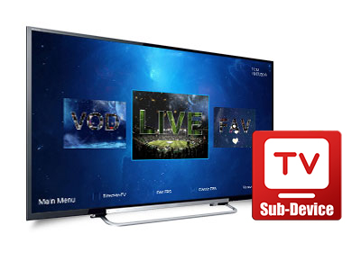 iView HD Plus Sub Device - 12 Month Account